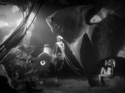 Música na Noite (1948)