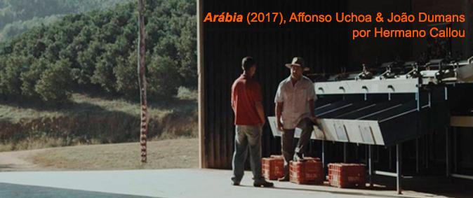 arabiahc-header